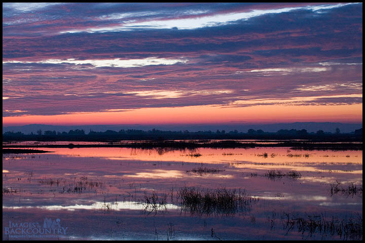 Sunset at Merced NWR