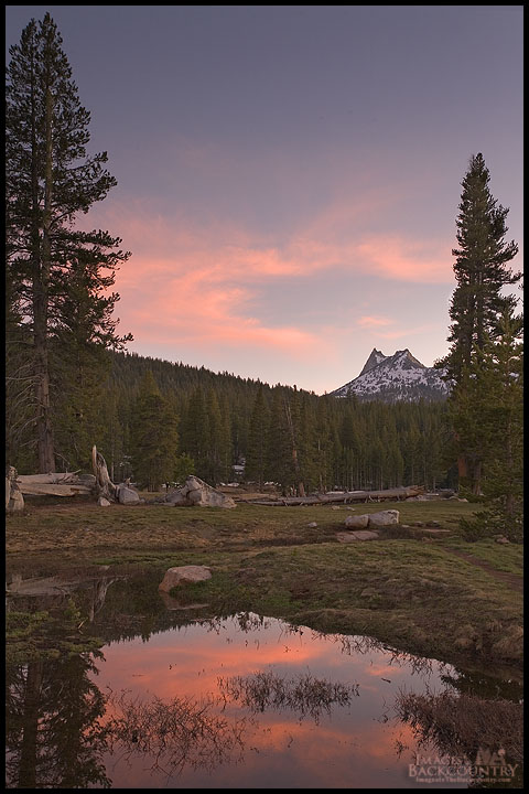 Cathedral Peak From Tuolmne Meadows