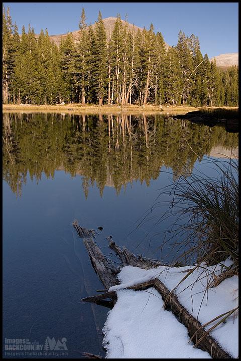 Mount Dana Yosemite