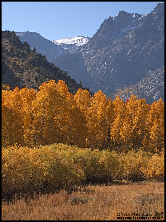 Fall Colors at June Lake Loop