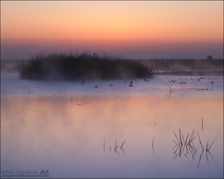Sunrise at the Merced NWR