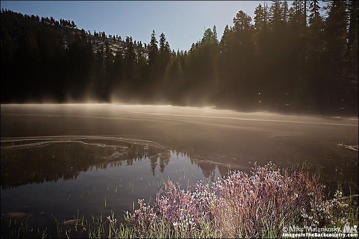 Siesta Lake by Moonlight