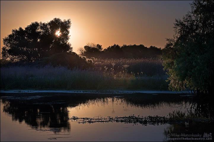 Sunrise at San Luis NWR
