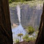 Yosemite Falls and reflections