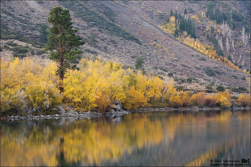 IMAGE: http://www.imagesinthebackcountry.com/wordpress/wp-content/uploads/2017/10/fall-colors-101217-03-web.jpg