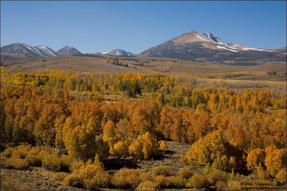 IMAGE: http://www.imagesinthebackcountry.com/wordpress/wp-content/uploads/2017/10/fall-colors-101217-18-web.jpg